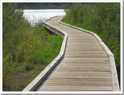 Lake Cassidy Boardwalk